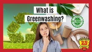 What is greenwashing
